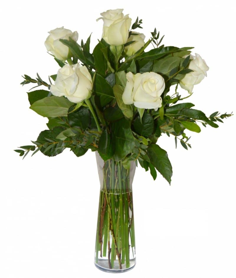 ramo-6-rosas-blancas-con-jarron-28e-media-docena-de-rosas-blancas-es-un-arreglo-de-flores-perfecto-para-cualquier-ocasion