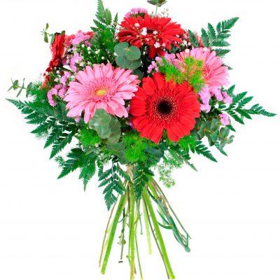 ramo-gerberas-18-2428e-precioso-ramo-con-una-bonita-variedad-de-color-que-seguro-haran-las-delicias-de-quien-las-vea