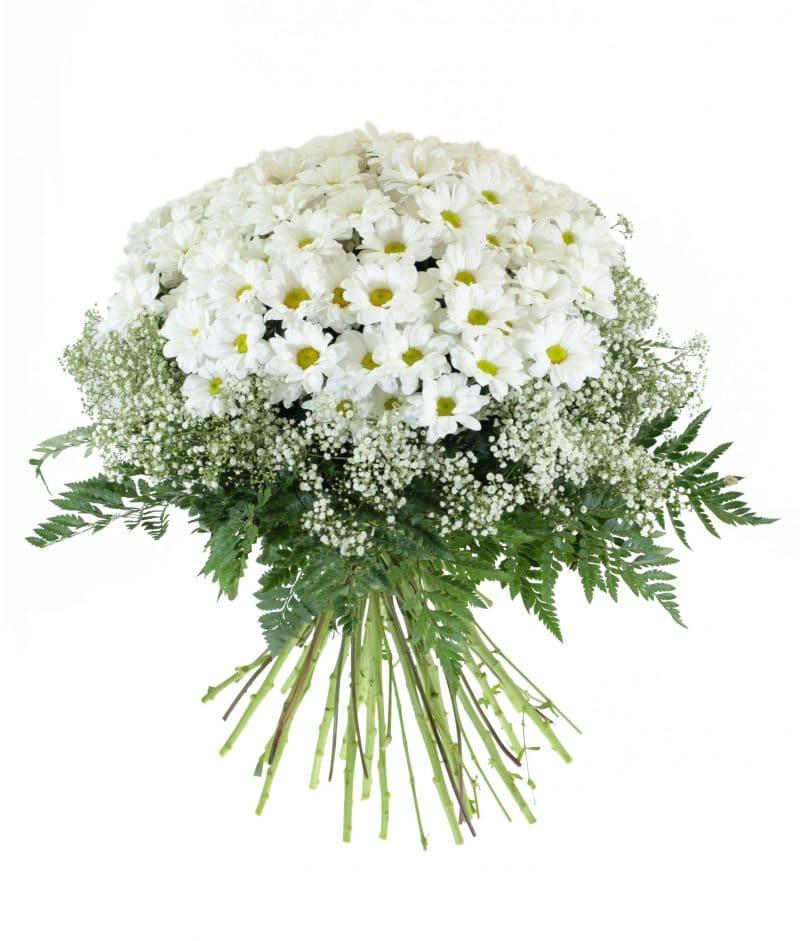 ramo-margarita-182533e-un-ramo-desenfadado-y-nos-haga-sonreir-porque-la-vida-es-bella-el-ramo-de-la-imagen-corresponde-al-tamano-medium
