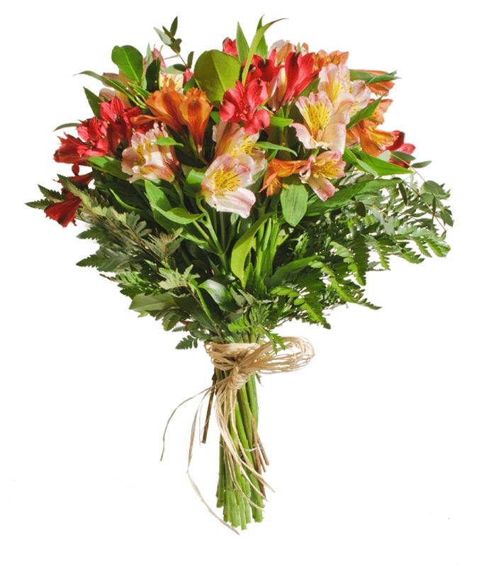 ramo-de-alstroemeria-202632e-ramo-de-flores-formado-por-alstroemerias-de-diferentes-colores-el-ramo-de-la-imagen-corresponde-al-tamano-medium